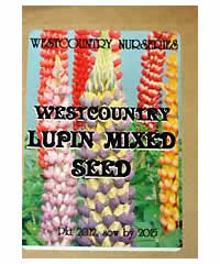 Lupinus Westcountry special mixed seed