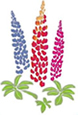 Westcountry Nurseries Lupins Logo